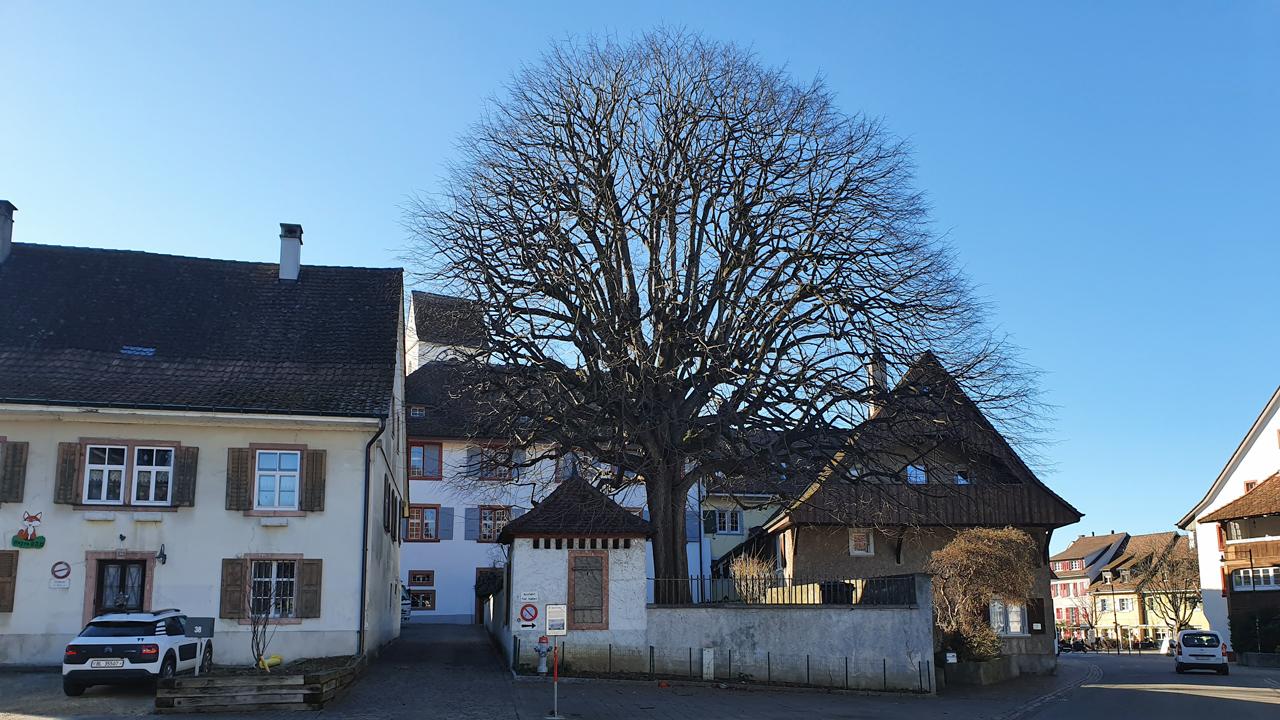 Pfarrhaus 2